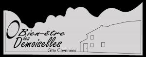 """Home """"O bien-être des demoiselles"""" website"""